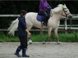 5297c017274229b3b965ff8fb1cbbc8a 300x225 馬の脚