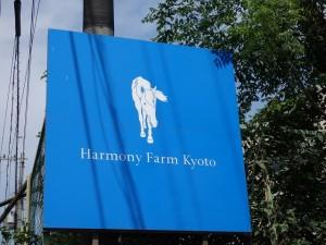 6a58c88246effc15c7194a0832eacb69 300x225 Harmony Blue