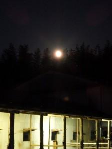 78ee866ee56fe73b5019822f11f1013b 225x300 月を眺めて馬を眺めて