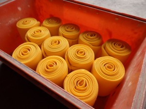 P1050193 300x225 Yellow