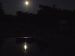 c04ae87670bfdc3304b0eb84c3ec5bbe 300x225 今宵の月のように