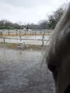 d8782d3bebabe14f39b152549902e745 225x300 どうして雨だと言ったんだろう?