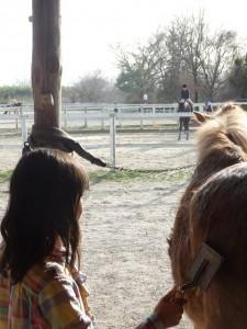 efda4f1bbc48af4dabe154c7d984fc01 225x300 体験乗馬