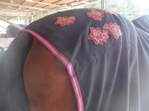 fdb58810101332e2984e3d78eda762bc 300x225 バラが咲いた